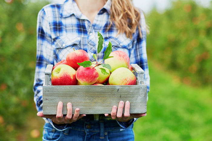 How to Tell if Apples are Fresh