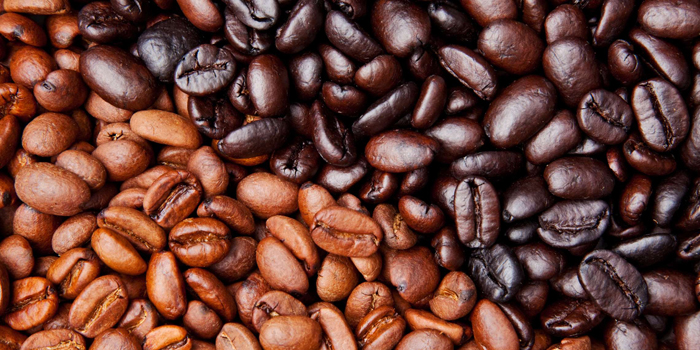Light, Medium, or Dark Roast?
